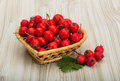 Hawthorn berries in the bowl on wood background Royalty Free Stock Image