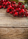Hawthorn berries on wooden board Royalty Free Stock Image