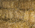 Hay As Background