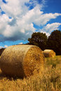 Hay away! Royalty Free Stock Photos