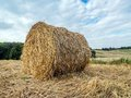 Hay bale drying on the open air Royalty Free Stock Images