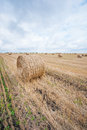 Hay Bale in the Field Stock Photography