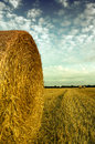 Hay bale in a french field Royalty Free Stock Photo