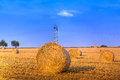 Hay bale in the harvest time Stock Image