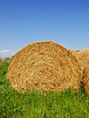 Hay bale outdoor shot of a Royalty Free Stock Image