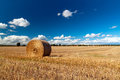 Hay bale on the swedish field Stock Photo