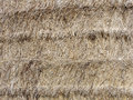 Hay bale texture Royalty Free Stock Images