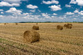 Hay bales on the agricultural field after harvest  sunny summer day Royalty Free Stock Photo