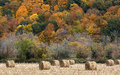 Hay bales and fall color Royalty Free Stock Photo