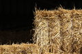 Hay bales for feeding horses to the stable Royalty Free Stock Photo