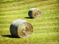 Hay bales at a field Royalty Free Stock Photo