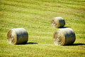 Hay bales at a field Royalty Free Stock Image