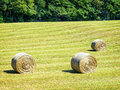 Hay bales at a field Stock Photography
