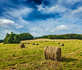 Hay bales on field agriculture background in summer Royalty Free Stock Images