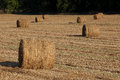 Hay Bales in the Field Royalty Free Stock Photo