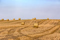 Hay bales on the field after harvest Royalty Free Stock Photo