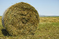 Hay bales on the field after harvesting the crop Stock Photo
