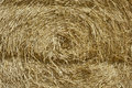 Hay bales full frame background Stock Images