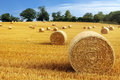 Hay bales in golden field bail harvesting landscape Stock Photo