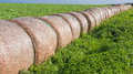Hay Bales Harvest Royalty Free Stock Photo