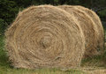 Hay bales large round hale with greenery background Royalty Free Stock Photo