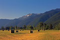 Hay bales and mountains this image of the the rugged in the background was taken in the early morning light in the nyack area of Royalty Free Stock Images