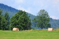 Hay bales round of at mountain landscape in poland Stock Image