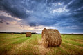 Hay bales at sunset Royalty Free Stock Photo