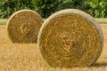 Hay bales in the wheat field Royalty Free Stock Photos