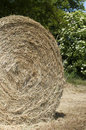 Hay ball detail Stock Photos