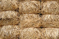 Hay in bunches Stock Photos