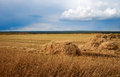 Hay field with a beveled rural landscape an oblique under stormy sky Royalty Free Stock Image