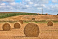 Hay harvest time Royalty Free Stock Photo