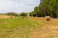 Hay pile in a farm field in Vale Seco, Santiago do Cacem Royalty Free Stock Photo