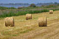 Hay piles Royalty Free Stock Photography