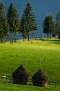 Hay piles on farmland Royalty Free Stock Photo