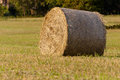 Hay roll close up Royalty Free Stock Photo