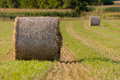 Hay roll on fields close up background Royalty Free Stock Image