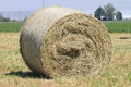 Hay roll of Tuscany Stock Photos