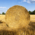 Hay roll on wheat field in late summer close up of harvested northern germany square crop Royalty Free Stock Image