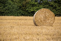 Hay roll during wheat harvest time Royalty Free Stock Photo