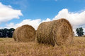 Hay rolls on meadow some Royalty Free Stock Image