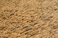 Hay roof in summer day close up image Stock Photography