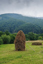 Hay stack Royalty Free Stock Photo
