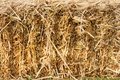 Hay stack wall shot franshoek western cape south africa Royalty Free Stock Image