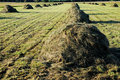 Hay stacks Royalty Free Stock Image