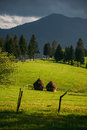 Hay stacks on farmland Royalty Free Stock Photo