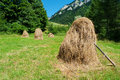 Hay stacks on field in poland Royalty Free Stock Image
