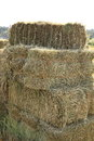 Hay stacks for front covers of magazines newspapers and billboards Royalty Free Stock Image