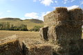 Hay stacks for front covers of magazines newspapers and billboards Royalty Free Stock Photo